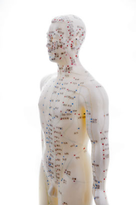 chinese medicine knowledge meridian system